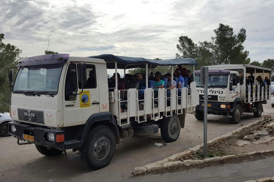 Safari Trucks - group tours - 30 to 45 people